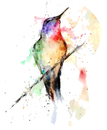kisspng-hummingbird-watercolor-painting-art-offset-5b5715a42650b0.684941731532433828157
